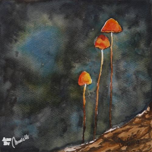 mushrooms2_244_56_default