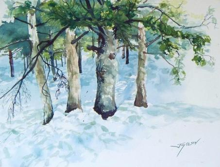 pine-trees-and-snow-joy-nichols