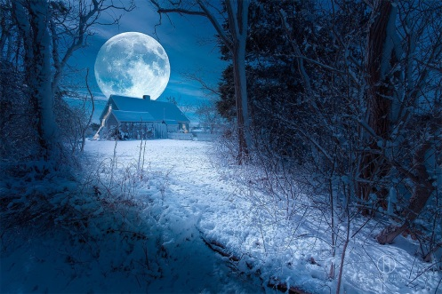 full-moon-cape-cod-landscapes