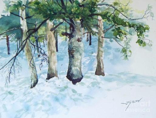 pine-trees-and-snow-joy-nichols